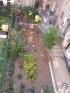 Innenhof/backyard