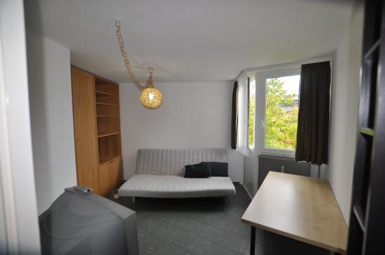 freundliche studentenwohnung zu vermieten - 1-zimmer-wohnung in, Wohnzimmer