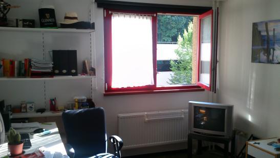 u erst g nstiges einzelappartement zur zwischenmiete 1 zimmer wohnung in w rzburg frauenland. Black Bedroom Furniture Sets. Home Design Ideas