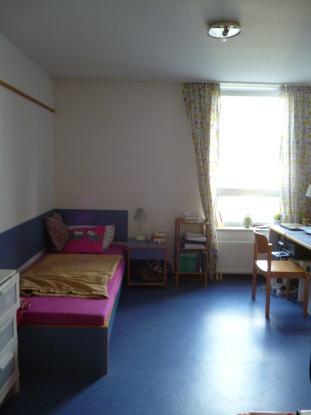 sch nes 1 zimmer appartement in erlangen s d 1 zimmer wohnung in erlangen erlangen s d. Black Bedroom Furniture Sets. Home Design Ideas