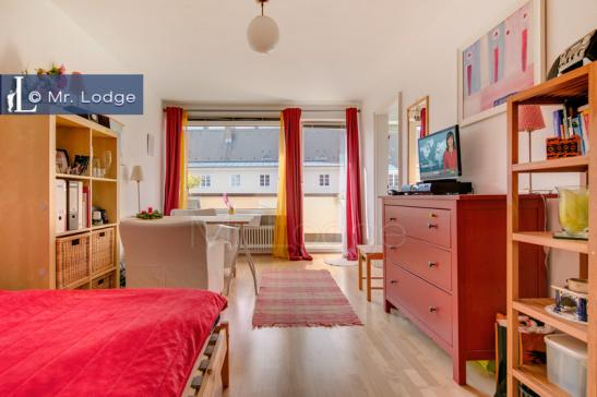 oktoberfest zentral gelegenes appartement zu vermieten 1 zimmer wohnung in m nchen. Black Bedroom Furniture Sets. Home Design Ideas