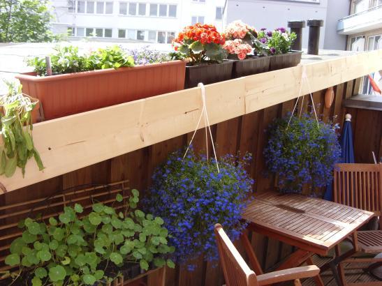 80qm wohnung mit traumhaftem balkon in perfekter lage ab 15 jan wohnung in neum nster innenstadt. Black Bedroom Furniture Sets. Home Design Ideas