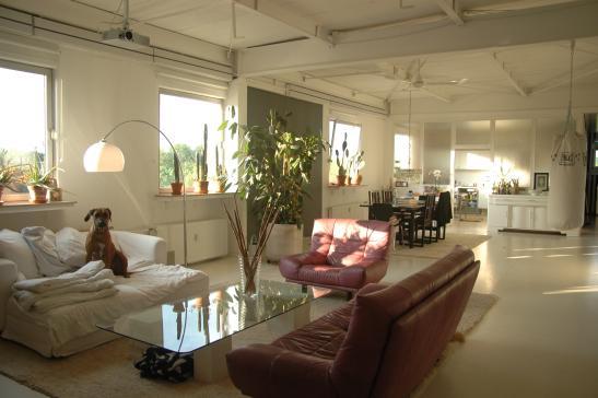 wundersch nes urbanes industrie loft wohnung in dortmund hafen. Black Bedroom Furniture Sets. Home Design Ideas