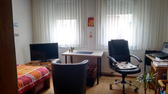 sch ne helle 1 zimmer wohnung voll m bliert 1 zimmer wohnung in mannheim seckenheim. Black Bedroom Furniture Sets. Home Design Ideas
