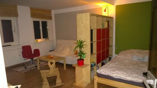 wohnung im vorderen westen mit blick auf das tannenw ldchen 1 zimmer wohnung in kassel. Black Bedroom Furniture Sets. Home Design Ideas