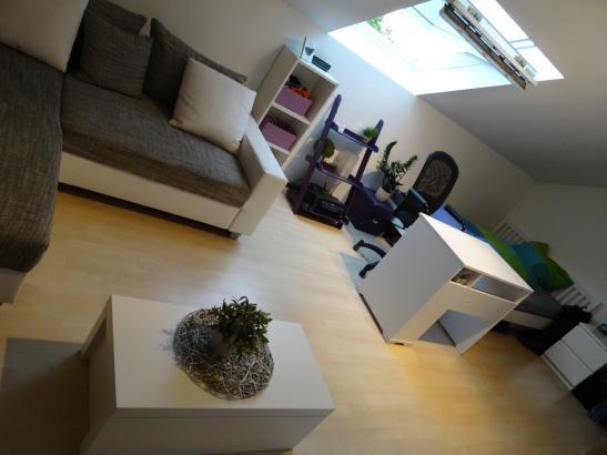 1 zimmer wohnung in frankfurt h chst ab august zu. Black Bedroom Furniture Sets. Home Design Ideas