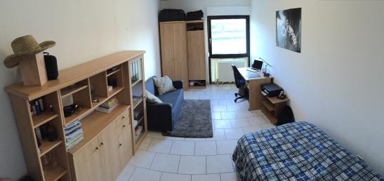 komfortables 1 zimmer appartement m bliert 1 zimmer wohnung in mannheim jungbusch. Black Bedroom Furniture Sets. Home Design Ideas