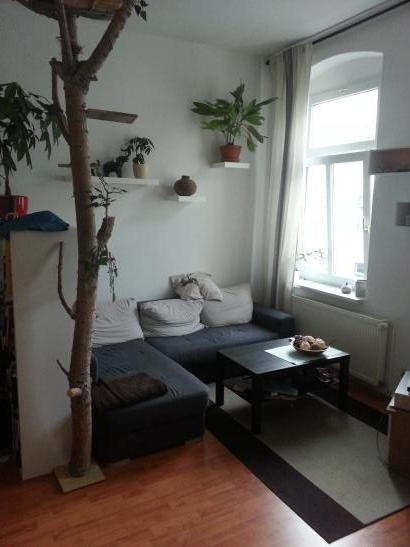 2 zimmer k che bad einige m bel zu verkaufen wohnung in halle saale medizinerviertel. Black Bedroom Furniture Sets. Home Design Ideas