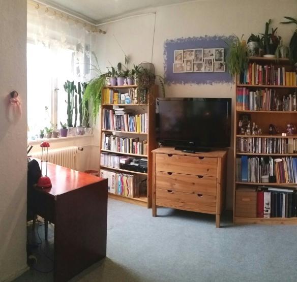 gem tliche m bilierte einraumwohnung in ruhiger gr ner lage 1 zimmer wohnung in berlin steglitz. Black Bedroom Furniture Sets. Home Design Ideas