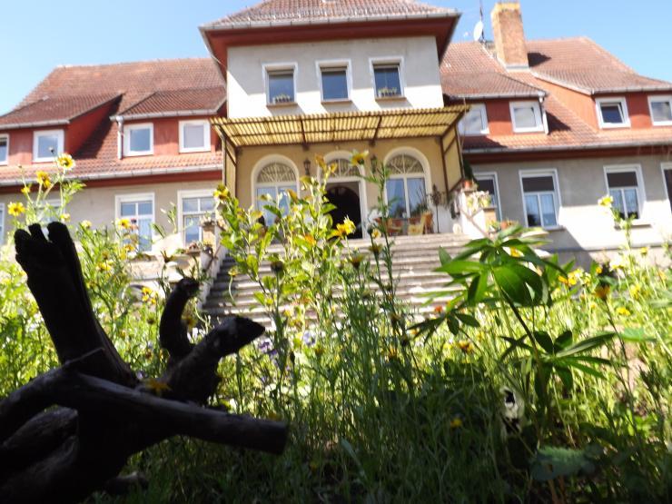 sofort raus aufs land wohnen im alten gutshaus 17121 vierow wohnung in greifswald vierow. Black Bedroom Furniture Sets. Home Design Ideas