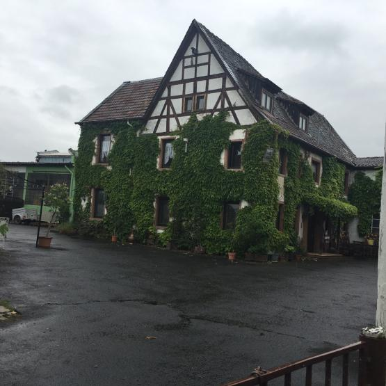 Wohnung Osthofen