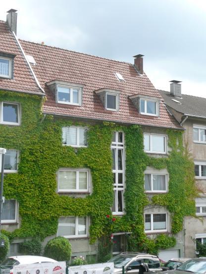 Zentral gelegene komplett modernisierte 2 zimmerwohnung for Haus zu mieten gesucht