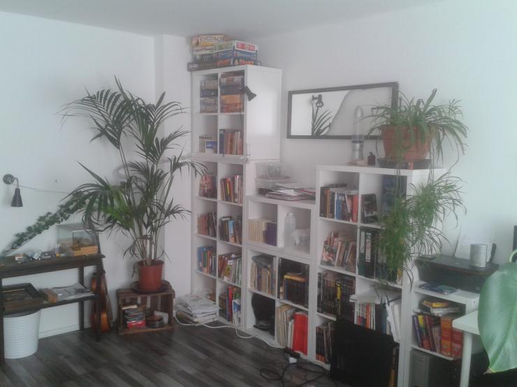 koblenz single wohnung cssprikaz. Black Bedroom Furniture Sets. Home Design Ideas