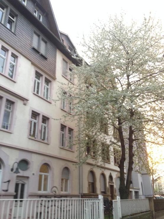helles wg zimmer in entspannter wg wg zimmer in frankfurt am main bornheim. Black Bedroom Furniture Sets. Home Design Ideas