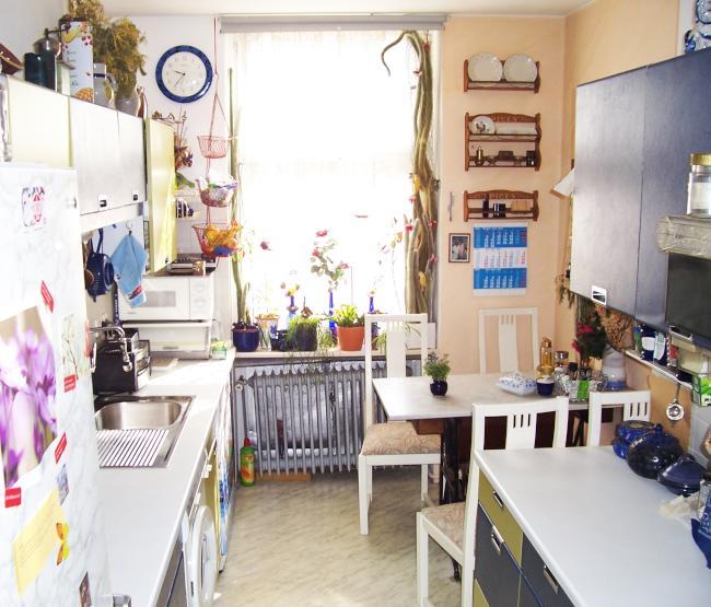 an frau stark verbilligt gelegentlich homesitting pflanzenpflege wg zimmer in berlin neuk lln. Black Bedroom Furniture Sets. Home Design Ideas