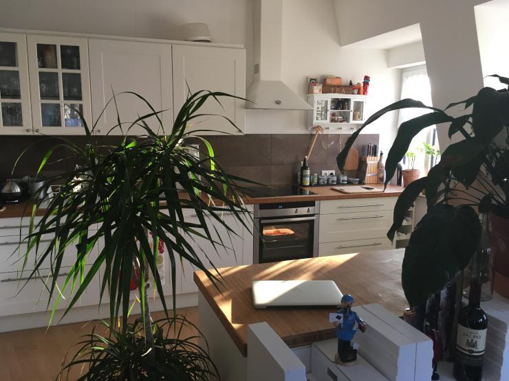 m blierte 3 zimmer wohnung mit balkon wohnung in dresden pieschen. Black Bedroom Furniture Sets. Home Design Ideas