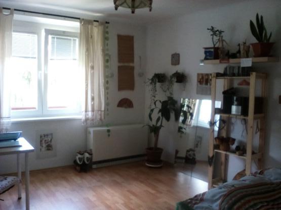g nstiges und helles 21m gro es zimmer f r den februar zu vergeben wg in wien m bliert wien. Black Bedroom Furniture Sets. Home Design Ideas