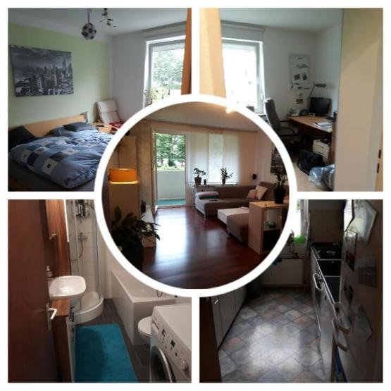 Zimmer Wohnung Braunschweig Balkon