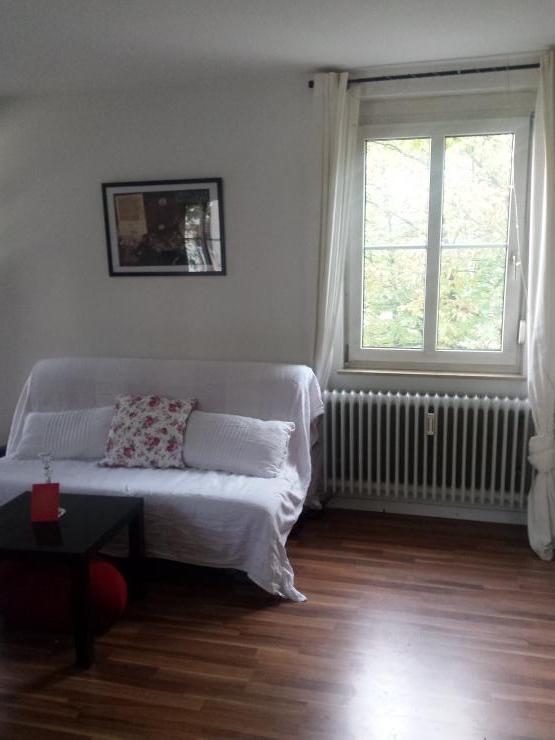 wundersch ne gro e helle 1 zimmer wohnung im herzen freiburgs 1 zimmer wohnung in freiburg. Black Bedroom Furniture Sets. Home Design Ideas