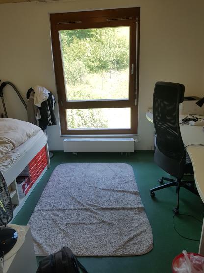M bliertes einzelzimmer in idyllischer lage in t bingen for Zimmer tubingen