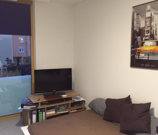 ruhig gelegenes vollm bliertes appartment in den quadraten 1 zimmer wohnung in mannheim quadrate. Black Bedroom Furniture Sets. Home Design Ideas
