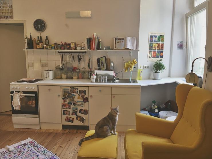 ruhige 1 zi wohnung zur untermiete mit katze 1 zimmer wohnung in berlin sch neberg. Black Bedroom Furniture Sets. Home Design Ideas