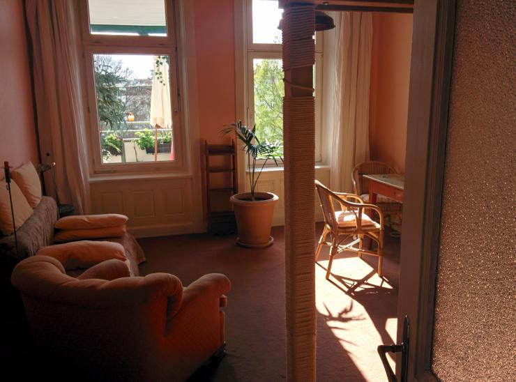 etwas besonderes ruhige oase 40 qm mitten in der stadt. Black Bedroom Furniture Sets. Home Design Ideas