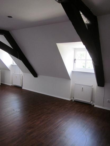 Geraumige penthouse wohnung traumblick stadt  Wohnungen Bamberg : Wohnungen Angebote in Bamberg