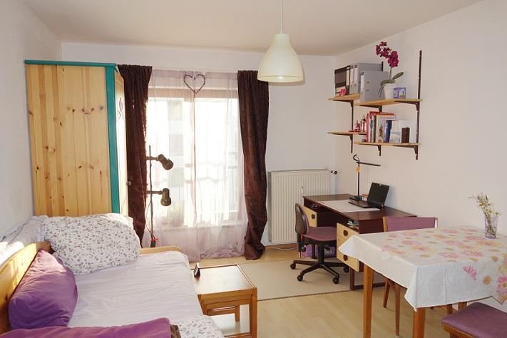 ein zimmer appartment n he uni uniklinikum 1 zimmer wohnung in regensburg ganghofersiedlung. Black Bedroom Furniture Sets. Home Design Ideas