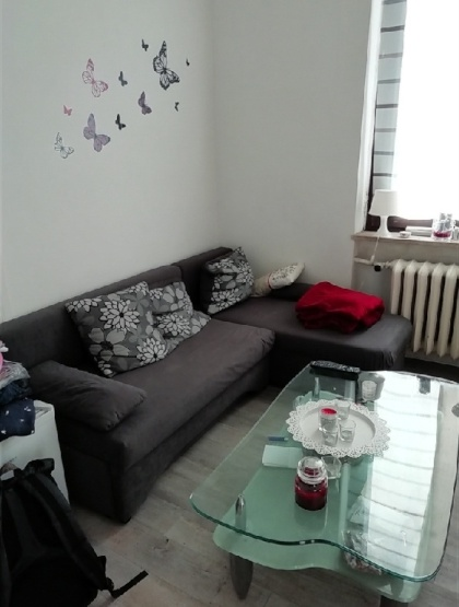wohnungen osnabr ck 1 zimmer wohnungen angebote in osnabr ck. Black Bedroom Furniture Sets. Home Design Ideas